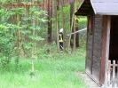 WaldbranduebungJG_UPLOAD_IMAGENAME_SEPARATOR1